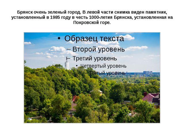 Брянск очень зеленый город. В левой части снимка виден памятник, установленны...