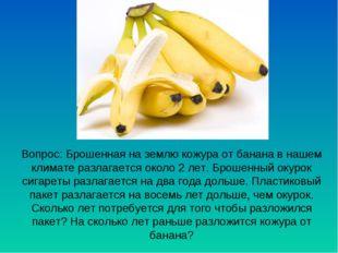 Вопрос: Брошенная на землю кожура от банана в нашем климате разлагается около