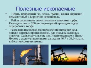 Полезные ископаемые Нефть, природный газ, песок, гравий, глины кирпично-керам