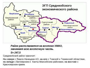 Район располагается на востоке ХМАО, занимает всю восточную часть. S≈ 247,5 Э
