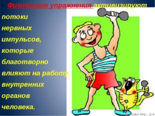 Физические упражнения активизируют потоки нервных импульсов, которые благотво