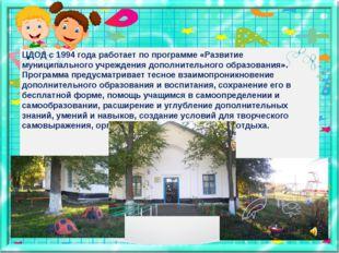 ЦДОД с 1994 года работает по программе «Развитие муниципального учреждения до