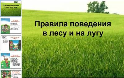 hello_html_m6769437d.jpg