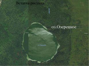 Озеро Озерецкое.(спутниковая фотография, озеро со стороны болота.) Озеро имее