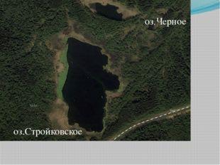 оз.Стройковское оз.Черное