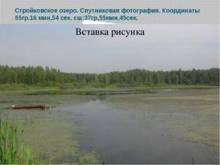 Стройковское озеро. Спутниковая фотография. Координаты 55гр.16 мин,54 сек. сш