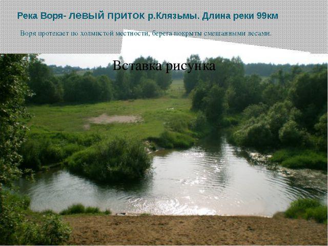 Река Воря- левый приток р.Клязьмы. Длина реки 99км Воря протекает по холмисто...