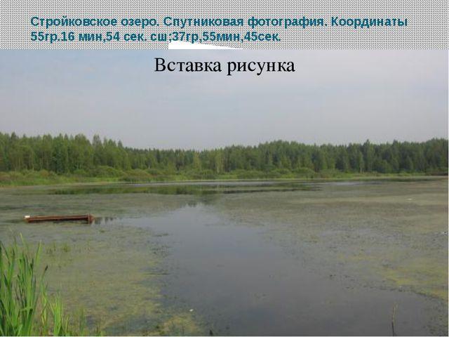 Стройковское озеро. Спутниковая фотография. Координаты 55гр.16 мин,54 сек. сш...