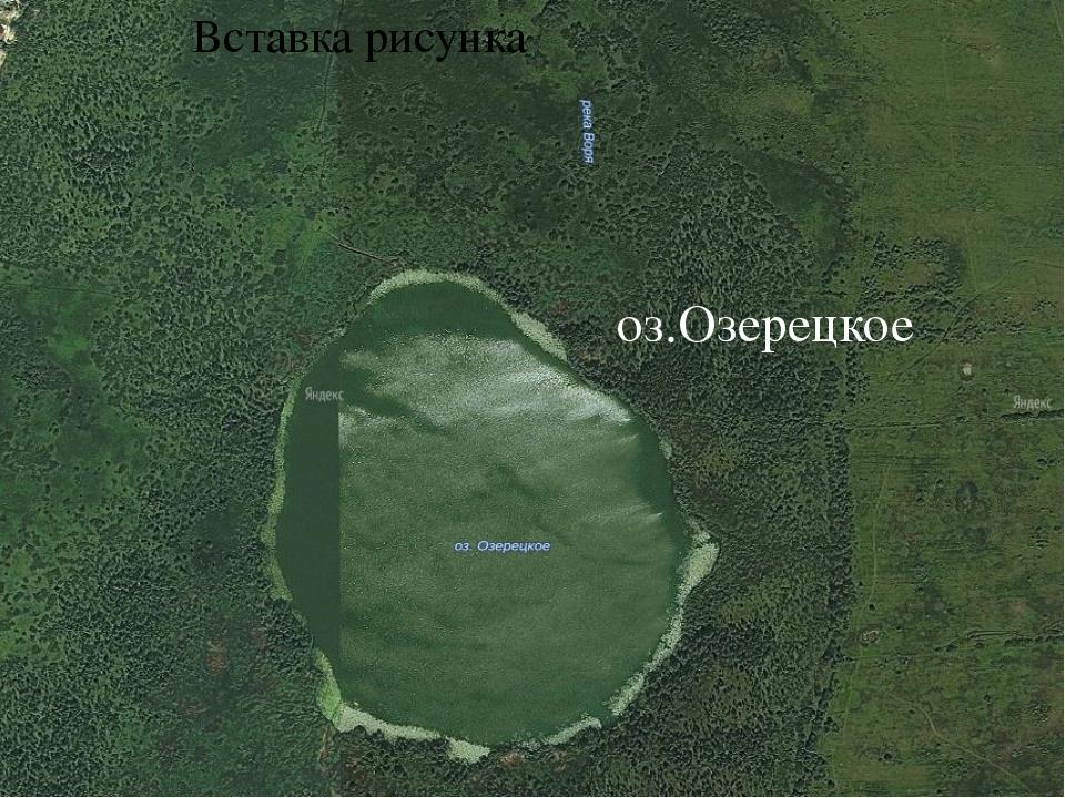 Озеро Озерецкое.(спутниковая фотография, озеро со стороны болота.) Озеро имее...