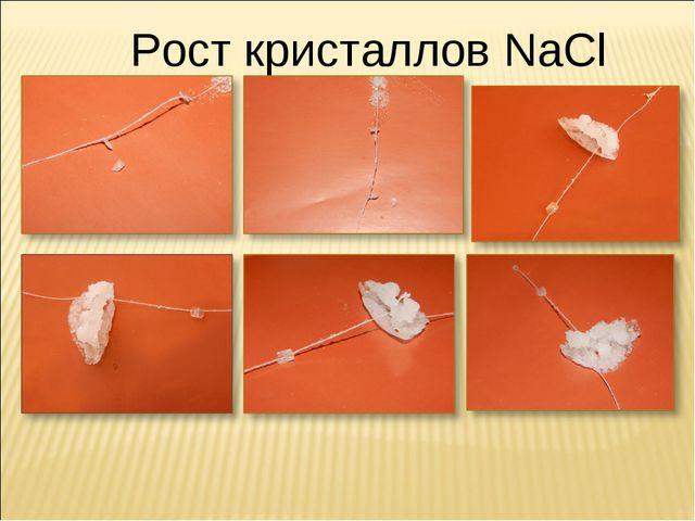 Рост кристаллов NaCl