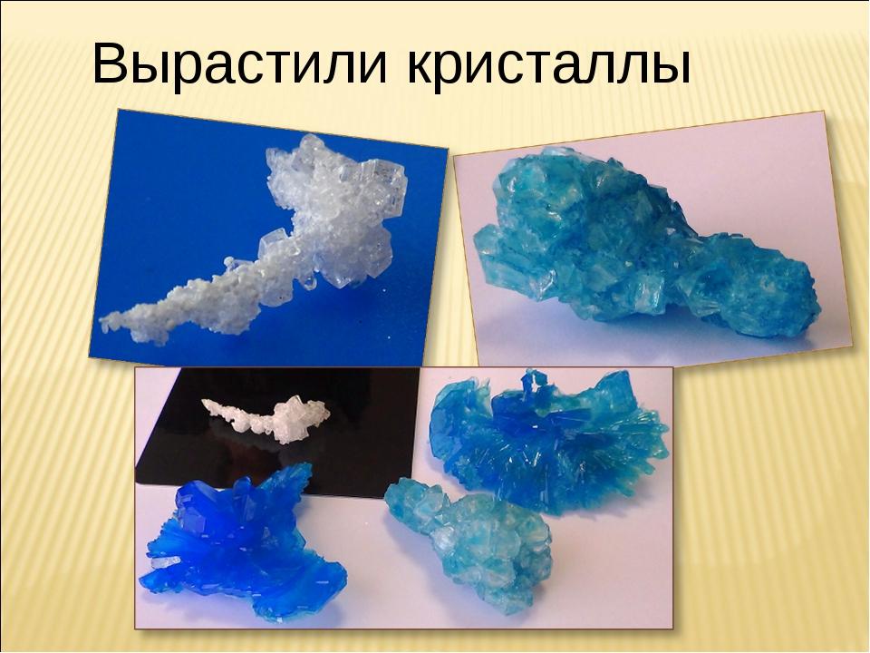 Вырастили кристаллы