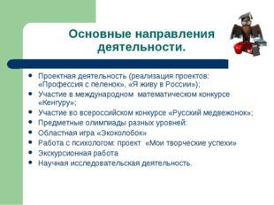 Основные направления деятельности. Проектная деятельность (реализация проекто