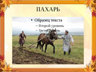 ПАХАРЬ