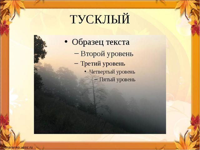ТУСКЛЫЙ