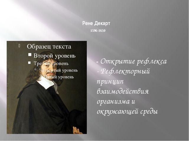 Развитие анатомии, физиологии, психологии и гигиены с начала XIX в. до наших...