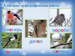 Словарно- орфографическая работа снегирь сорока дятел воробей синица