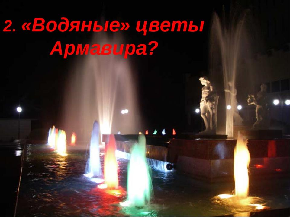 2. «Водяные» цветы Армавира?