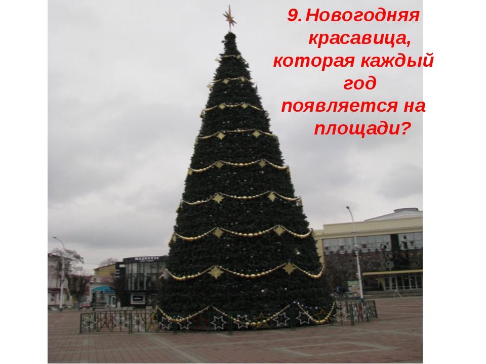 Новогодняя красавица, которая каждый год появляется на площади?