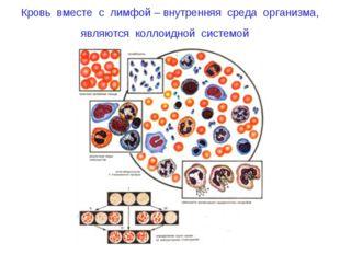 Кровь вместе с лимфой – внутренняя среда организма, являются коллоидной систе