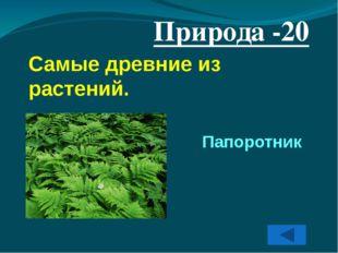 Города -40 Крупный город Кузбасса, история которого начинается с создания вое