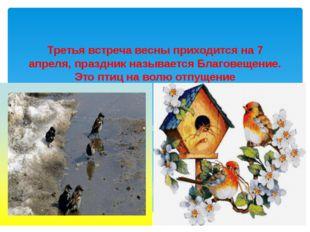 Третья встреча весны приходится на 7 апреля, праздник называется Благовещение