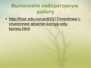 Выполните лабораторную работу http://fcior.edu.ru/card/2377/vneshnee-i-vnutre