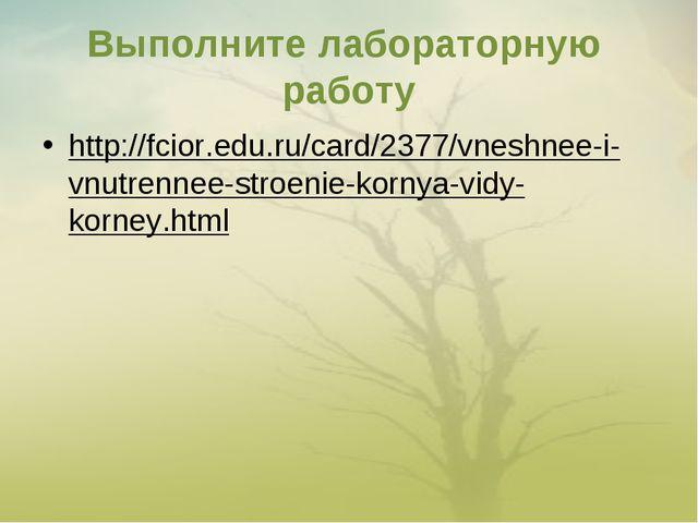 Выполните лабораторную работу http://fcior.edu.ru/card/2377/vneshnee-i-vnutre...