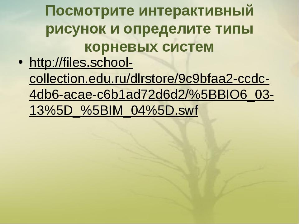 Посмотрите интерактивный рисунок и определите типы корневых систем http://fil...