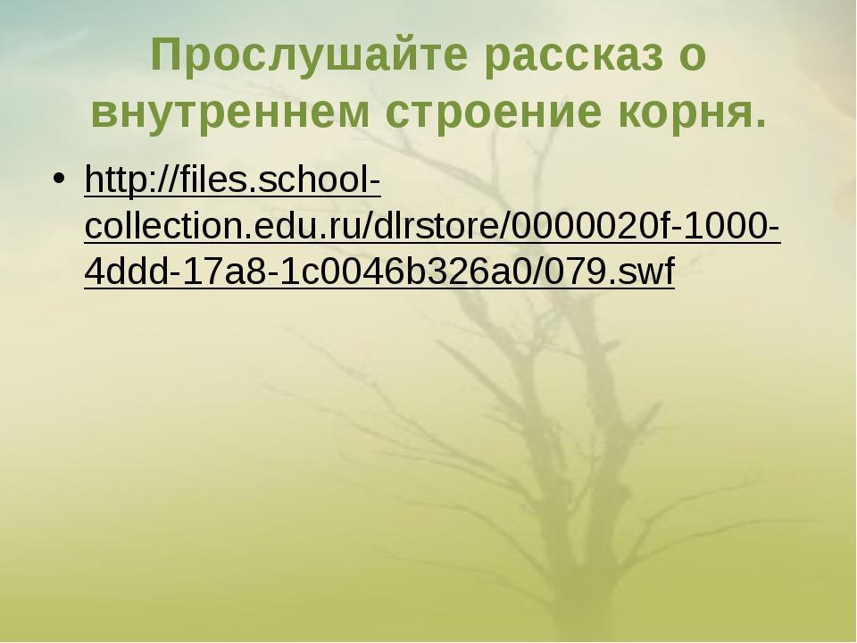 Прослушайте рассказ о внутреннем строение корня. http://files.school-collecti...