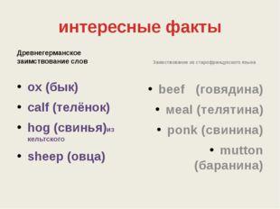 интересные факты Древнегерманское заимствование слов ox (бык) calf (телёнок)