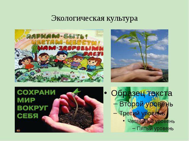 Экологическая культура