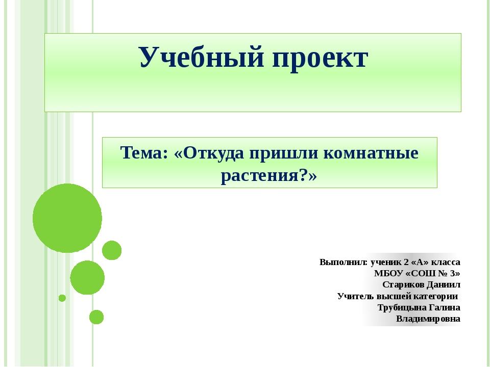 Учебный проект Тема: «Откуда пришли комнатные растения?» Выполнил: ученик 2 «...