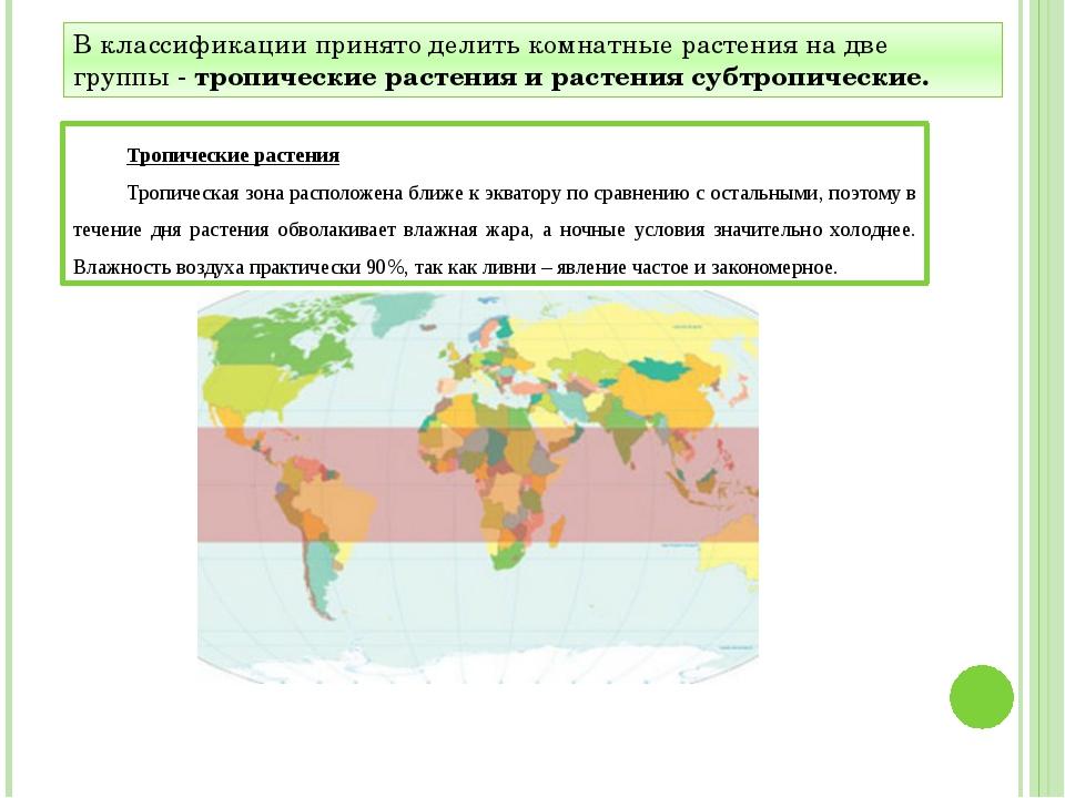 В классификации принято делить комнатные растения на две группы - тропические...