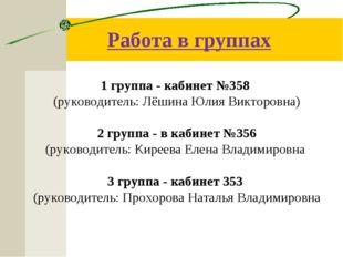 Работа в группах 1 группа - кабинет №358 (руководитель: Лёшина Юлия Викторовн