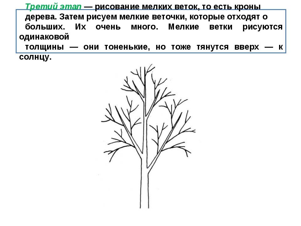 Третий этап — рисование мелких веток, то есть кроны дерева. Затем рисуем мелк...