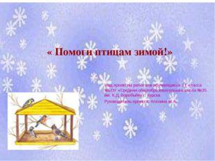 « Помоги птицам зимой!» Над проектом работали обучающиеся 3 Г класса МБОУ «Ср