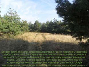 Донская земля относится к малолесным регионам России. Лесистость территории о