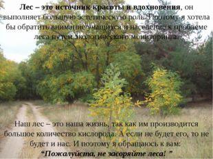 Лес – это источник красоты и вдохновения, он выполняет большую эстетическую р