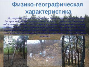 Физико-географическая характеристика Исследуемый участок леса находится к сев