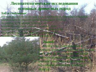 Для выявления количества здоровых, поврежденных, спиленных и больных деревьев