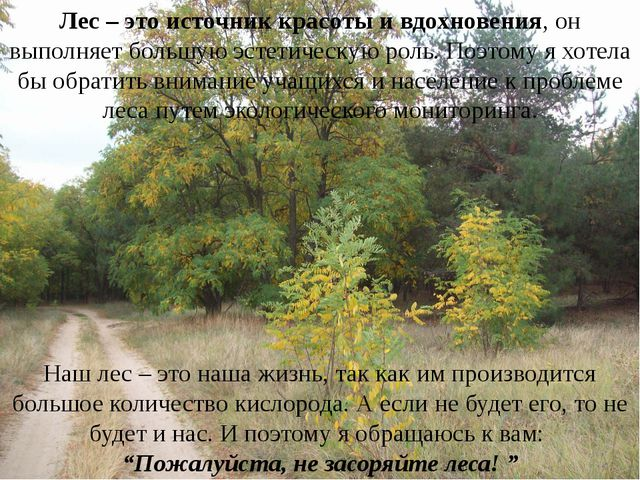Лес – это источник красоты и вдохновения, он выполняет большую эстетическую р...