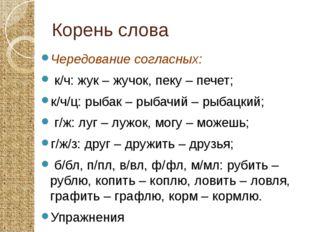 Корень слова Чередование согласных: к/ч: жук – жучок, пеку – печет; к/ч/ц: ры