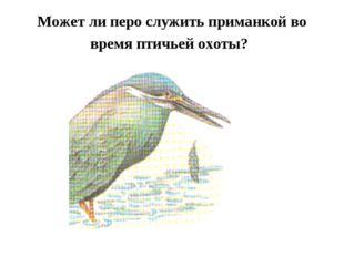 Может ли перо служить приманкой во время птичьей охоты?