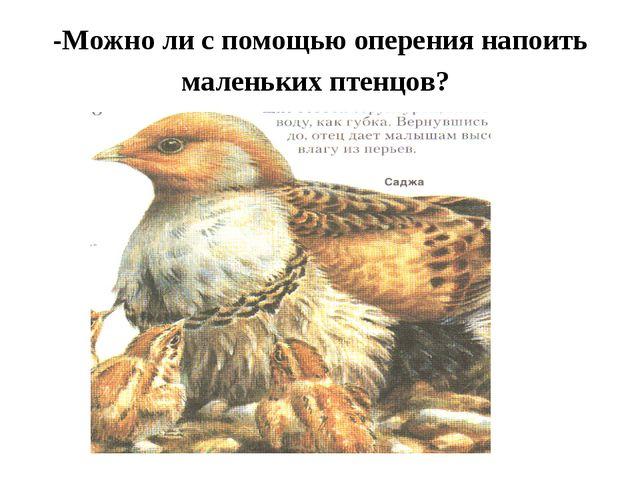 -Можно ли с помощью оперения напоить маленьких птенцов?