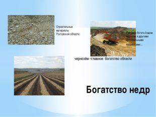Строительные материалы Ростовской области. Ракушка богата йодом, магнием и др