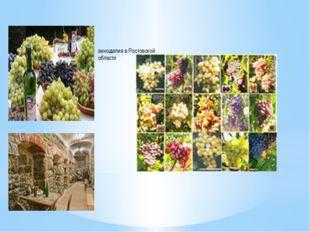 виноделия в Ростовской области