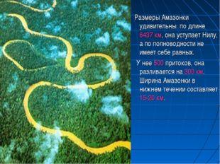 Размеры Амазонки удивительны: по длине 6437 км, она уступает Нилу, а по полн