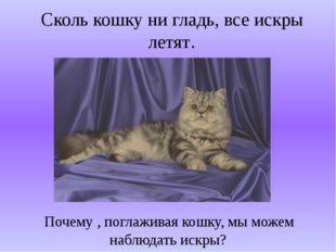 Сколь кошку ни гладь, все искры летят. Почему , поглаживая кошку, мы можем на