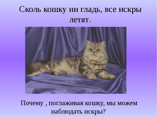 Сколь кошку ни гладь, все искры летят. Почему , поглаживая кошку, мы можем на...