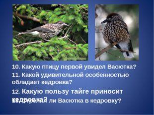 10. Какую птицу первой увидел Васютка? 11. Какой удивительной особенностью об